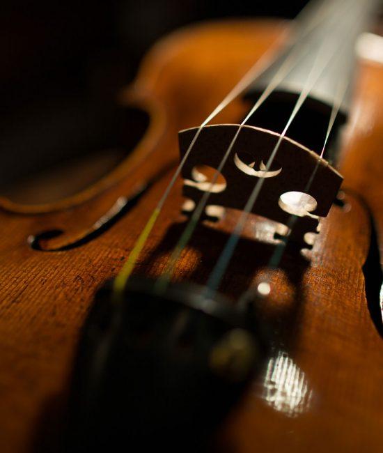 violin-guardelli